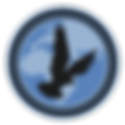 Condor-Security-Enterprise_Logo_New+.png