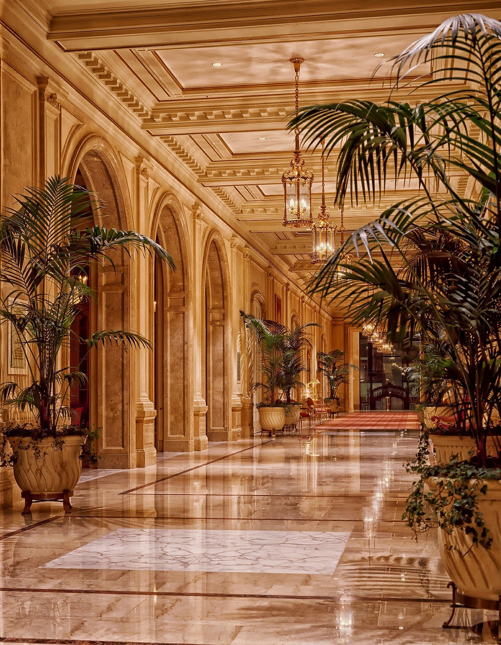 Definition of a palace hotel