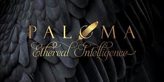 Black feathers web size PROJECT LOGO--1-
