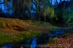 El crepúsculo del otoño