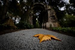 A las puertas del otoño