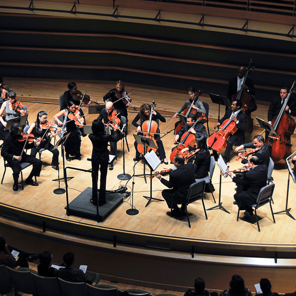 BPCO string orchestra.jpg