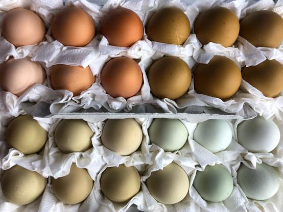 2 dozen mixed hatching eggs