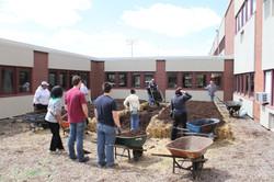 PH Linton School Straw Bale garden