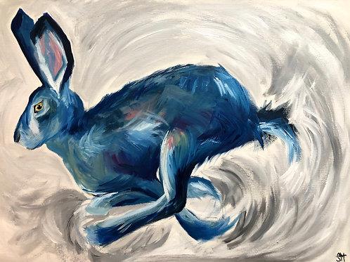 'Blue Hurricane Hare'