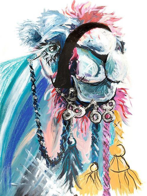 Disco Camel