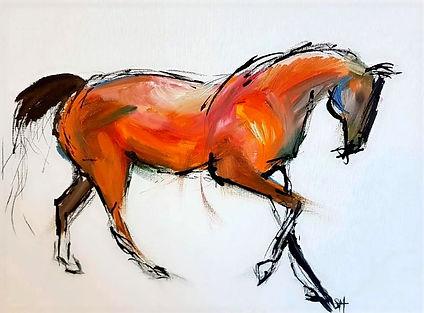 equus1_edited.jpg
