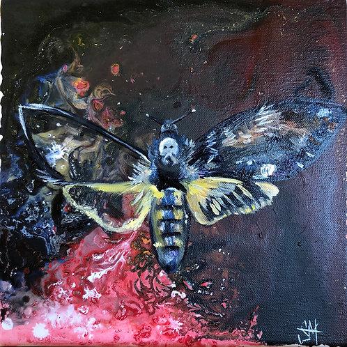 OPEN EDITION: 'Death's Head Hawk Moth' fine art Giclee Print