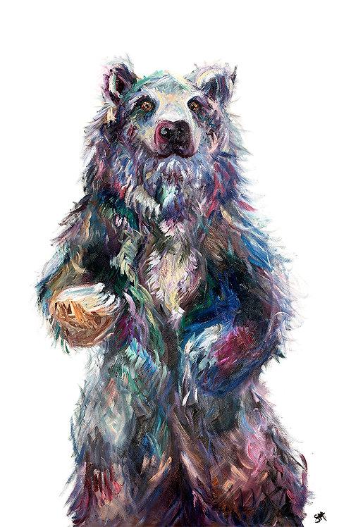 Bristol Bear Limited Edition A1 Print