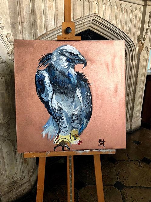 Harpy EaGAL