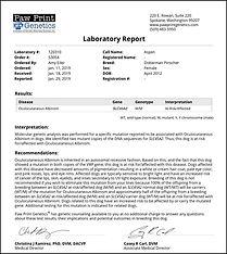 Aspen DNA Test (2).jpg