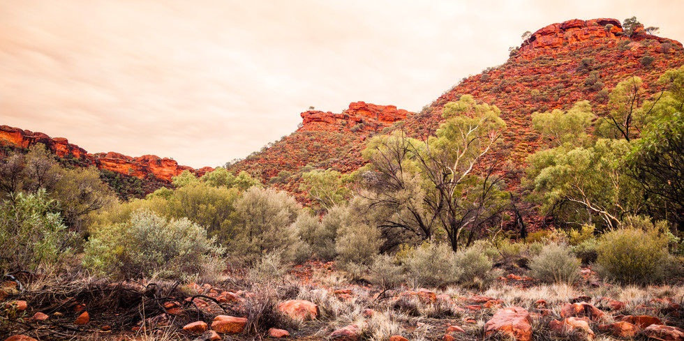 Kings Canyon Northern Territory Australia_5603.jpg