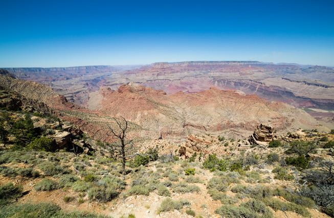Grand Canyon USA-8678.jpg