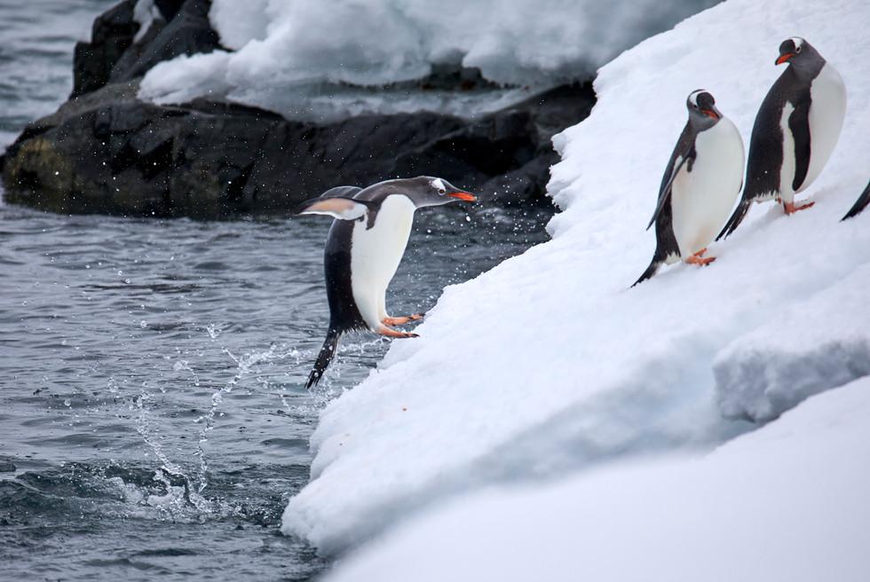 Slippery Slope, Antarctica