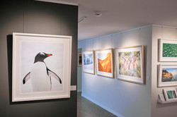WSP Gallery_1084