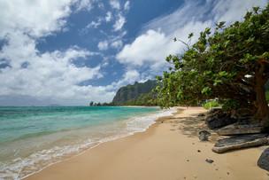 Hawaii_Oahu_DSF2524.jpg