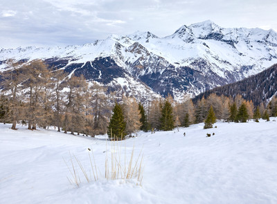 Winter paradise, French Alps