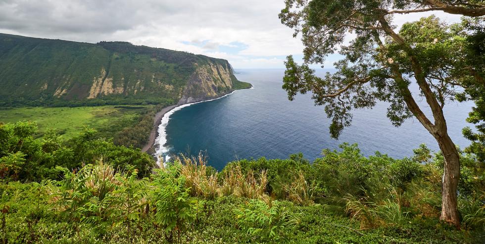 Hawaii_Oahu_DSF0233.jpg