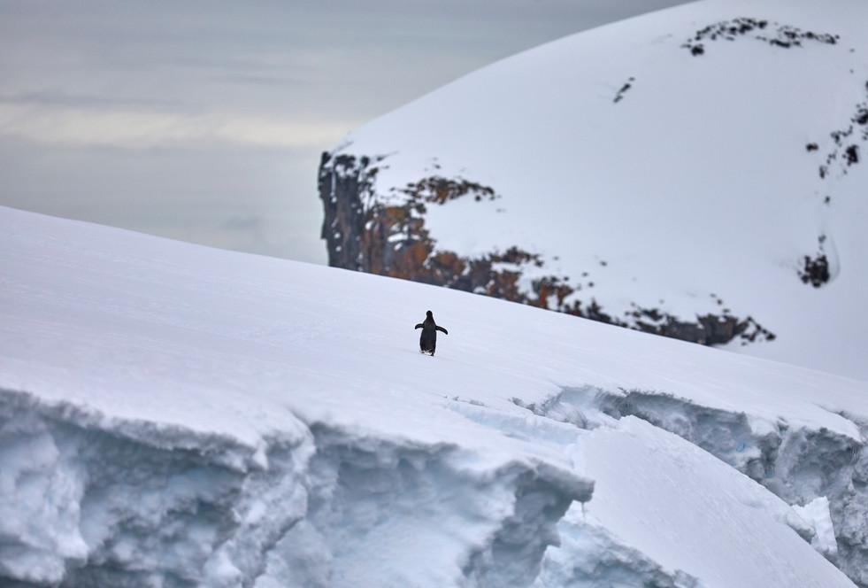 The climb, Antarctica