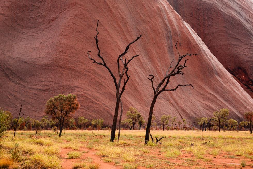 Uluru Northern Territory Australia_5214.