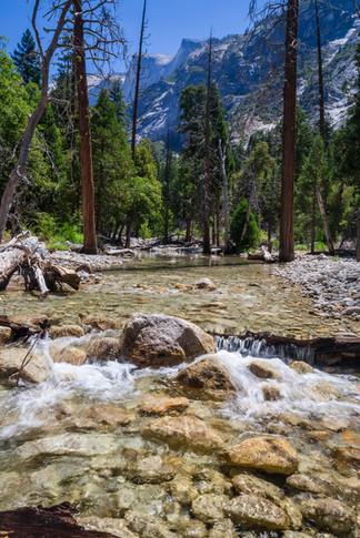 Yosemite USA-2055.jpg
