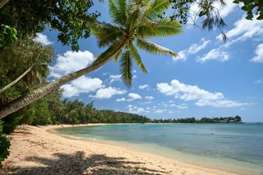 Hawaii_Oahu_DSF1299.jpg