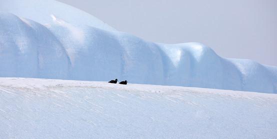 Ice wave, Antarctica
