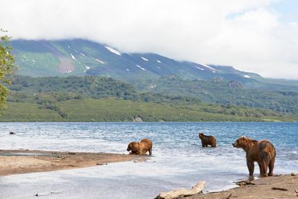 The hunting grounds, Kurilskoye Lake Kamchatka