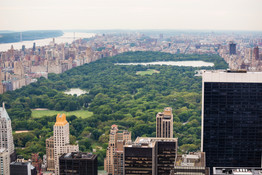 New York USA-6370.jpg