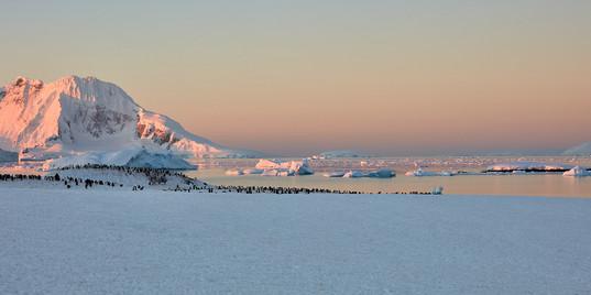 New dawn, Antarctica