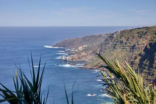 Santa Cruz de Tenerife, Spain_0539.jpg