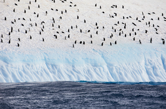 White Beach, Antarctica