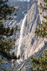 Yosemite USA-1675.jpg