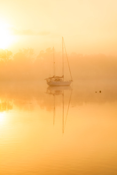 Fitzroy River Rockhampton Queensland-329