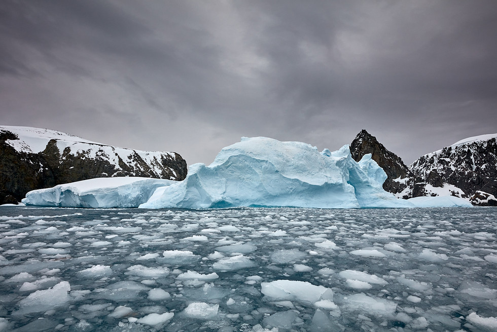 On the rocks, Antarctica