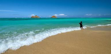 Hawaii_Oahu_DSF2640.jpg