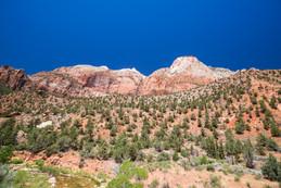 Zion National Park USA-0537.jpg