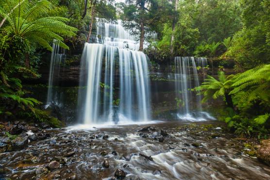 Mt Field Tasmania-7770.jpg