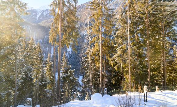 Glacier Express, Switzerland_2480.jpg