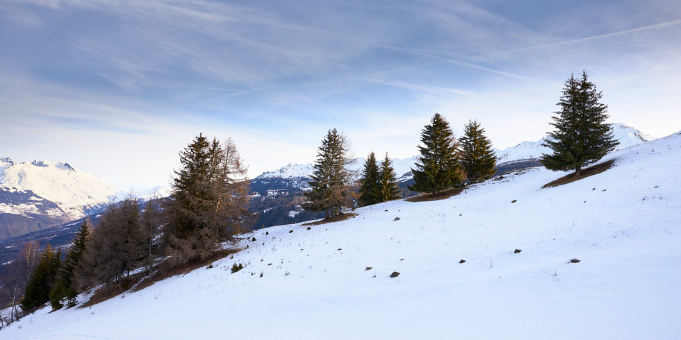 Dusted in snow, French Alps