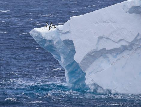 Riding high, Antarctica
