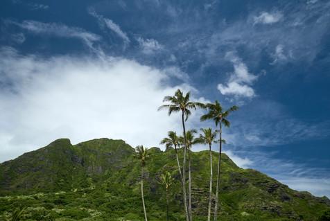 Hawaii_Oahu_DSF2515.jpg