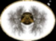 MJOMS Bee Tree Logo 2.png