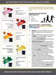 Zoombie Kit Brochure