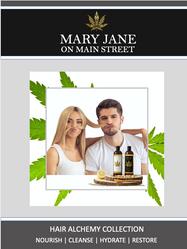 Hair Alchemy Brochure