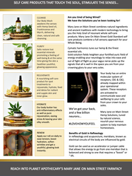 Body Alchemy Brochure