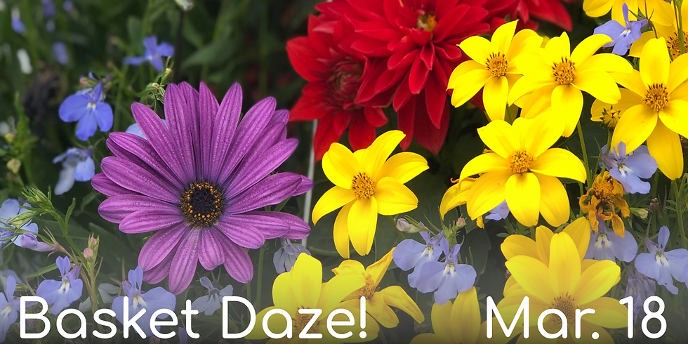 Basket Daze! (Mar. 18th)