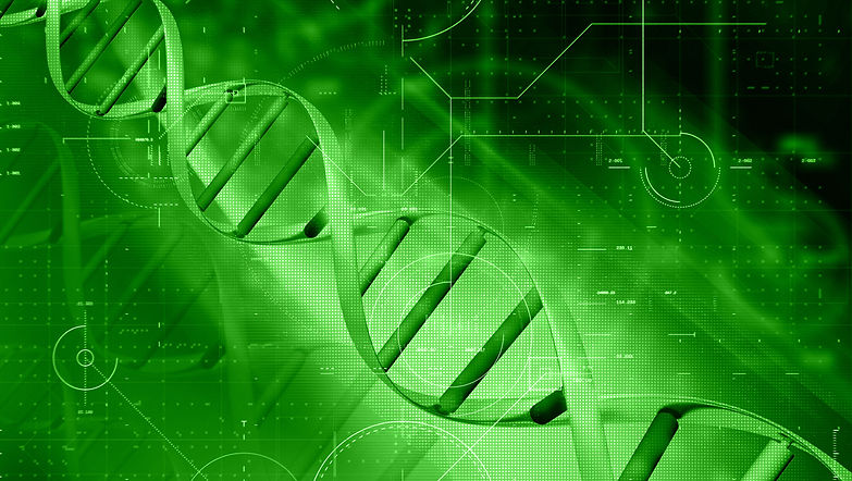 DNA Zero to Hero Nutrition Santa Maria.j