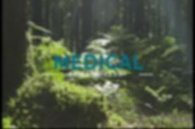 Reverse Nature Advert (0-01-21-16).jpg