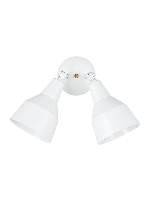 Adjustable Flood/Security Light